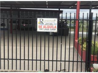 Local 4445 dealer 349-1000 Realtor