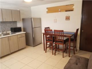 Remodelado Apt 2 Dormitorios $875