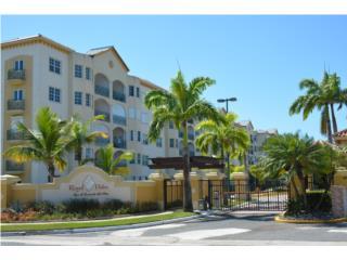Royal Palm,  Espacioso y amueblado!