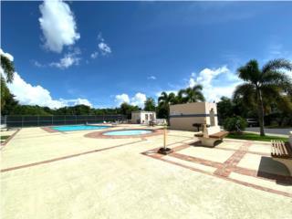 Regency Park- Remodeled- View