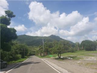 Carr. 150 km 10.9 (Palma Sola)