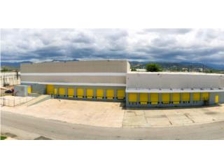 Remodeled warehouses for lease in Ponce