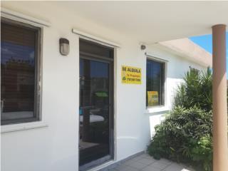 Magnolia Edificio Oficinas 1200 pc