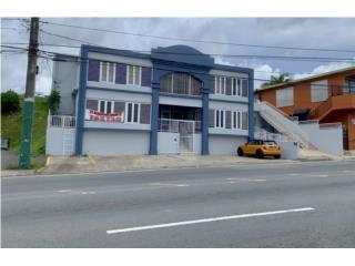 Local Comercial San Lorenzo