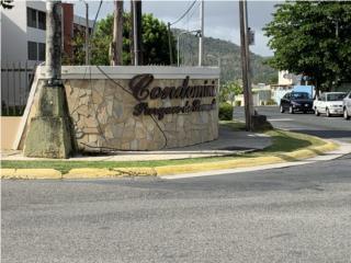 Se Alquila Apartamento en Caguas de 3H/1B/2E