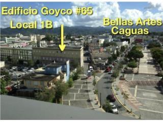 Calle Goyco #65 Caguas