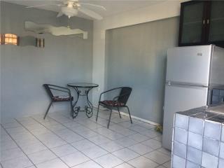 Muñoz Rivera Urb - acogedor apartamento