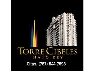TORRE CIBELES-REMODELADO-PKGS BAJO TECHO