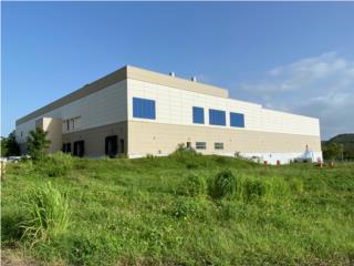 For Lease Industrial  Arecibo, Puerto Rico