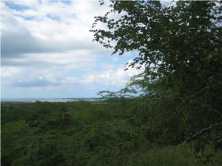 Carr 301 km 2  Vistamar Panoramic view