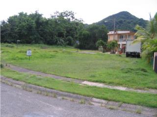 Solar de 400mc en Monte Grande Cabo Rojo