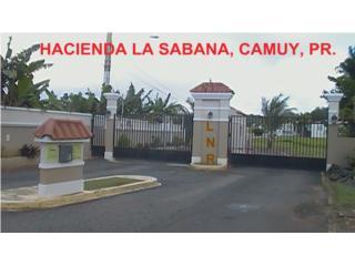 Hacienda La Sabana, Gated Community, Great Price