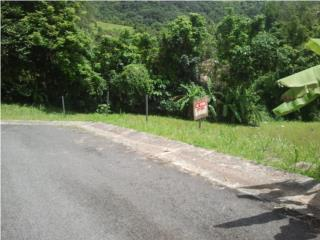 SOLAR 1,469 MC Cañaboncito, CAGUAS