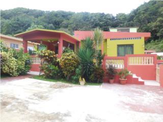 Se vende en Biafara, Miraflores, Arecibo