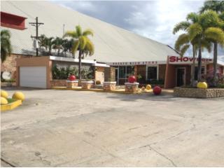 WAO Finca con Edificio Industrial Vega Baja