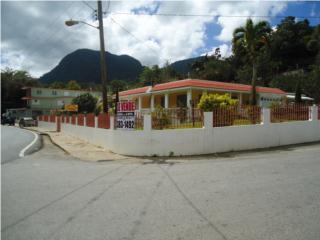 EN SALIENTE Y  CON RICO OLOR A CAFE FRESCO