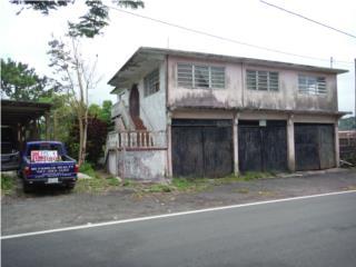 Palo Hincado Puerto Rico