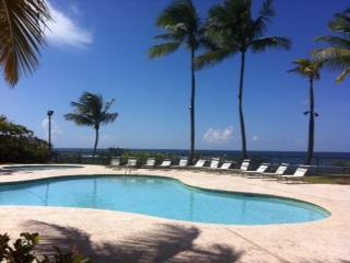 DORADO REEF beach front $890,000