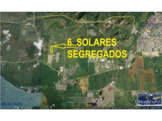 Sector Adela