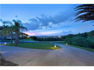 5 BD/  5 1/2BR, Estate House with Panoramic Views