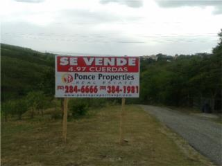 Villas de Rio Cañas Reducida!