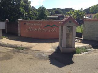 Sector Palache Hacienda Monteverde
