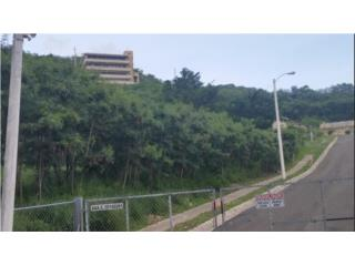 PARGUERA 1,500 Metros Vista Al Mar