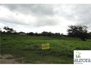 SR 690 Sabana Ward, Cerro Gordo Ward