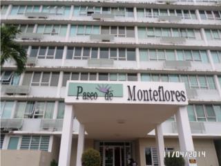 PASEO DE MONTEFLORES / HUD