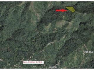 Bo. Hoconuco BajoCarr 361 km 6.2 Int.
