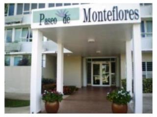 MEGA OPORTUNIDAD - PASEO MONTE FLORES