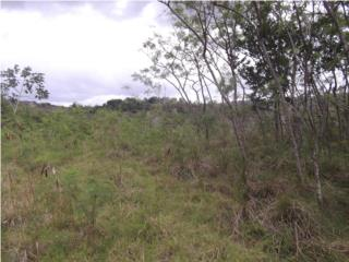 Terreno en Abonito Guerrero