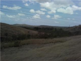 Brisas de Salinas, Carr. 706 Aguirre P.R