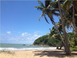 Yabucoa-Frente al Mar!!!  $385K OMO!!!