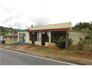 BO. PALOMAS-Comercial (3,407P2)