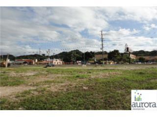 SR 2 Km 39.2 Algarrobo Ward