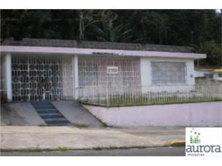 Bo. Pueblo Calle Emilio Castro Lote 29