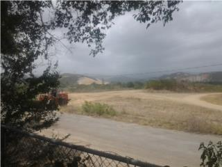 Sector La Cotorra, carretera 500, solares