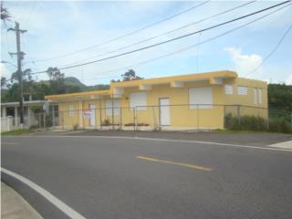 Ruta Panoramica Carr.143, Km 45.8