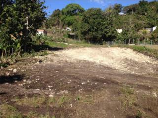 Hatillo,Bo. Aibonito,solar llano,864mts.