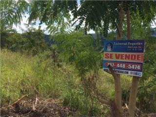 Bo. Quebrada Grande PR-349