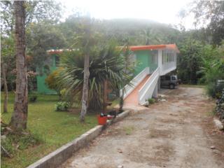 Barrio Juan Asencio Aguas Buenas