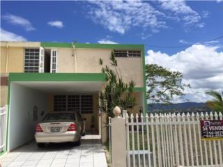 Villas de Castro/ Alturas del Turabo