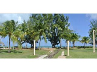 YUNQUE MAR BEACH RESORT-INCOME