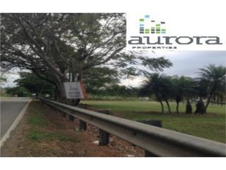 Solar en Manatí de 1500 m2 (9)