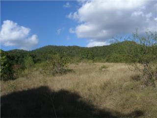 Terreno en Bo Los Llanos Coamo