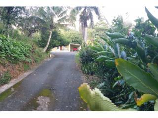 Casa con 5.4 cuerdas + Rio - 3c 1b Madera