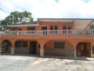 Bo. Domingo Ruiz Rd 638 Km. 1.5