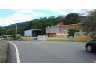 bo camino nuevo yabucoa puerto rico