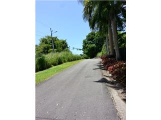 Beacon Hill Lots- Road 968, Close to Rio Mar